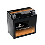 YTX5L-BS High Performance – Maintenance Free – Sealed AGM Motorcycle Battery Reviews