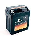 YTX7L-BS | 7L-BS High Performance – Maintenance Free – Sealed AGM Motorcycle Battery